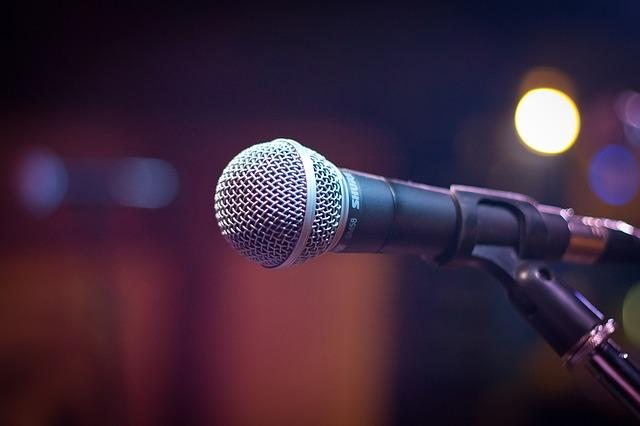 Gesangsmikrofon Test Handmikrofon