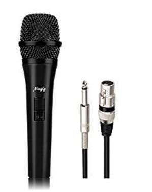 Gesangsmikrofon kaufen Mugig